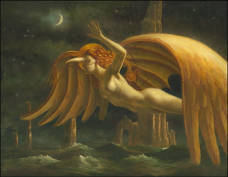 foto jake baddeley 1 jake-baddeley-2009_dreamflights
