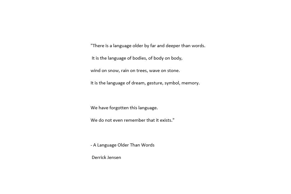 foto madonna texto language