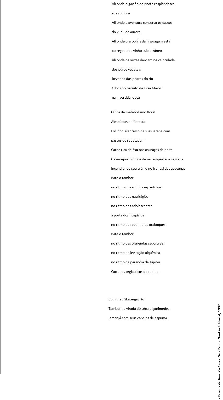 foto gavião poema texto